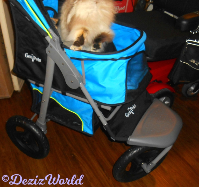 Raena jumps into stroller from floor