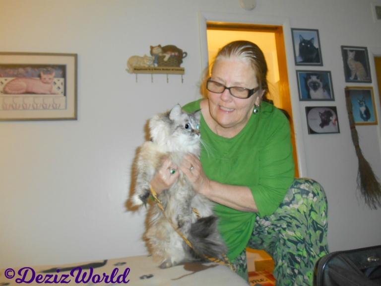 Dezi poses with awnty Nora at the Cat Motel