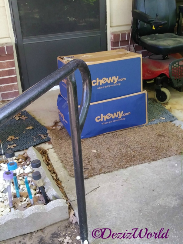 Chewy box delivery sitting in front of door
