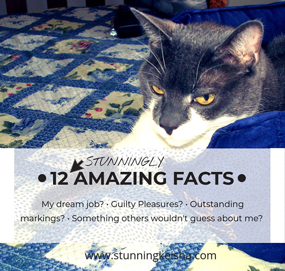 12 Amazing Facts badge