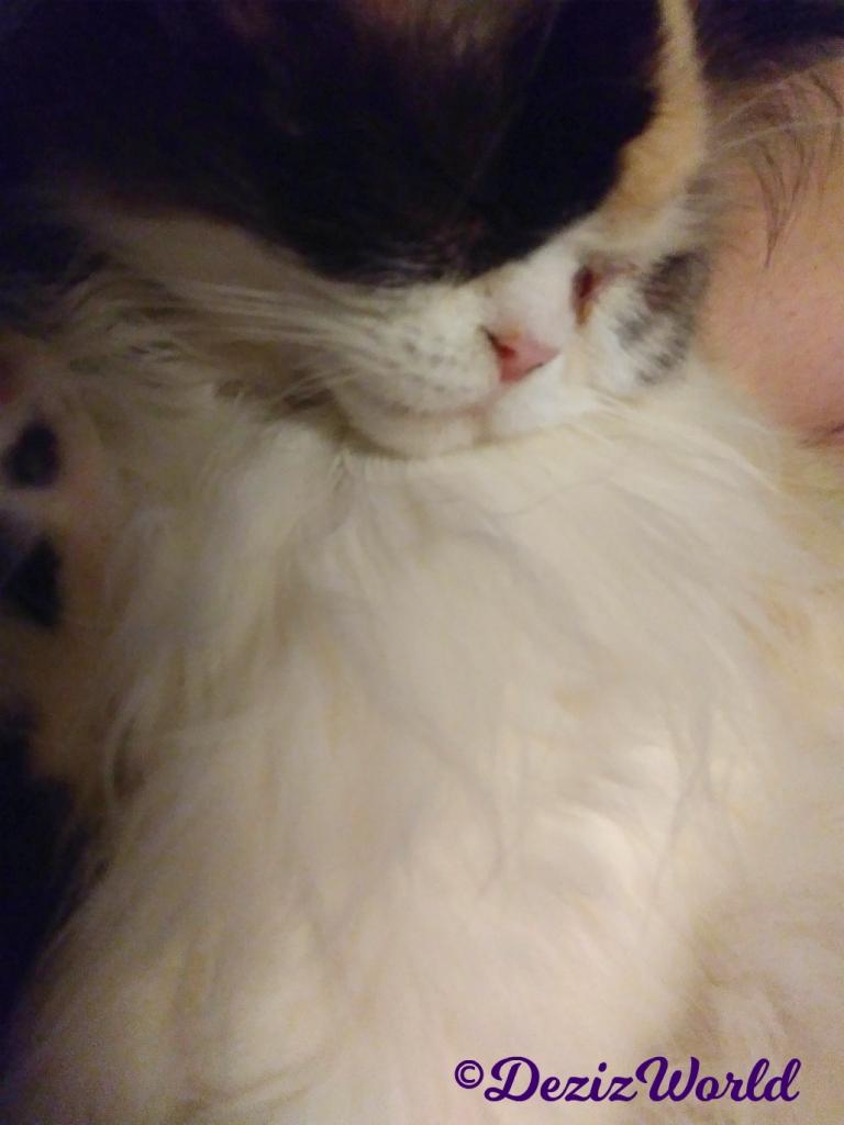Raena sleepy selfie