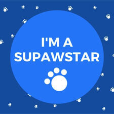 SupawStar Blog Award Badge