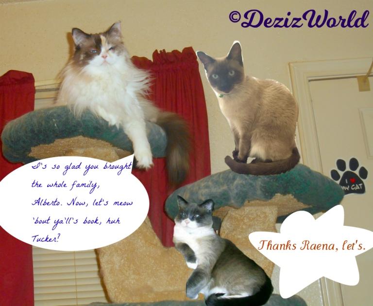 Raena, Alberto and Tucker lay atop the liberty cat tree