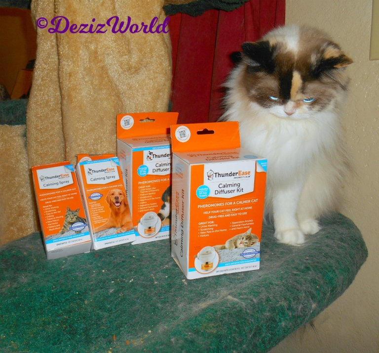 Raena poses with the ThundrEase Calming products