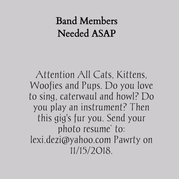 Band Ad for Dezi's party