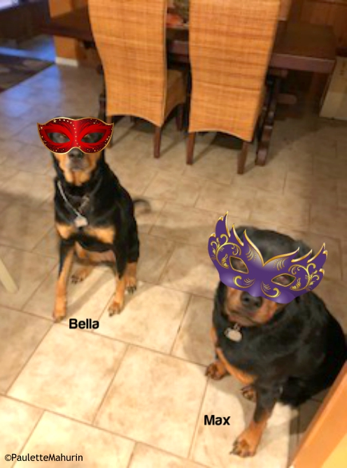 Bella and Max in masks