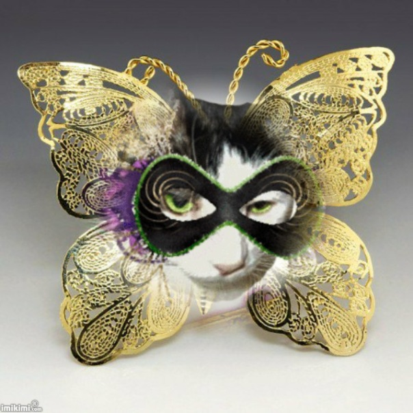 Aetheling in butterfly mask