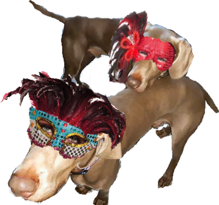 Phenny and Nelson in masks
