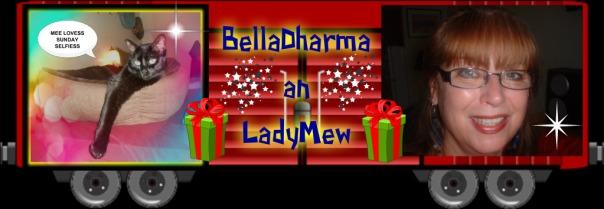 BellaDharma boxcar