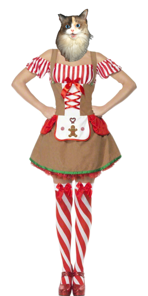 Raena dressed as gingerbread woman