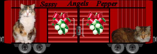 Vonda, Sassy and Pepper boxcar