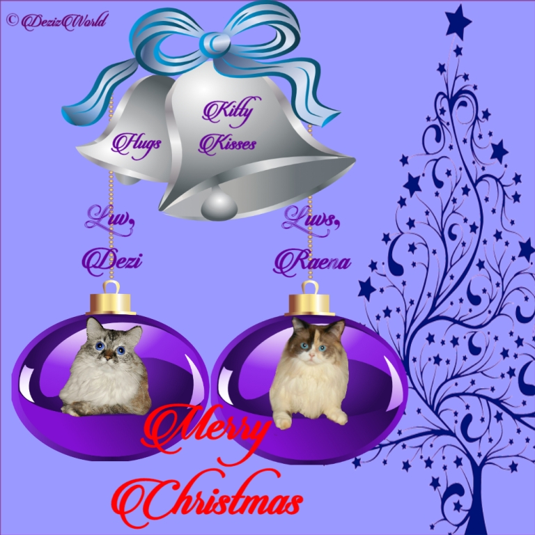 Dezi and Raena insd=ide Christmas balls on card