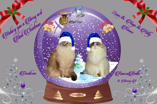 Dezi, Raena and angel Lexi in a Christmas frame