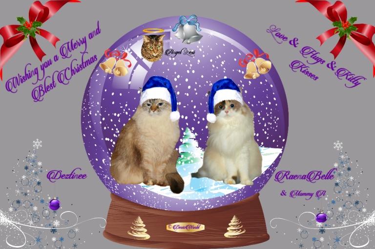 Dezi, Raena and angel Lexi in a Christmas frame