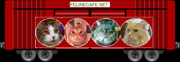 Feline Cafe boxcar