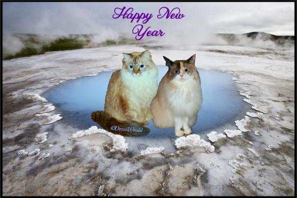 Dezi and Raena in an icy new years frame