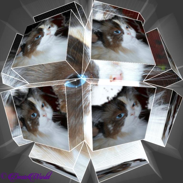 Raena selfie in a circular geometry frame
