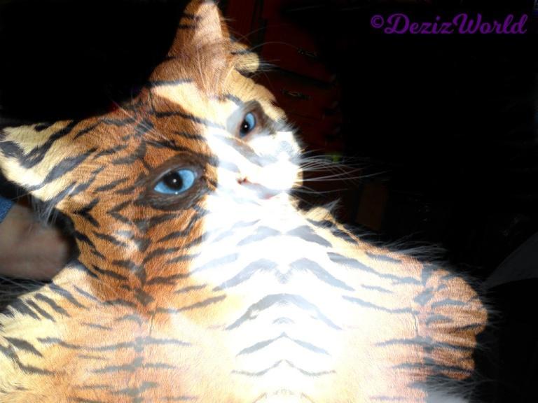 Raena selfie as a tiger