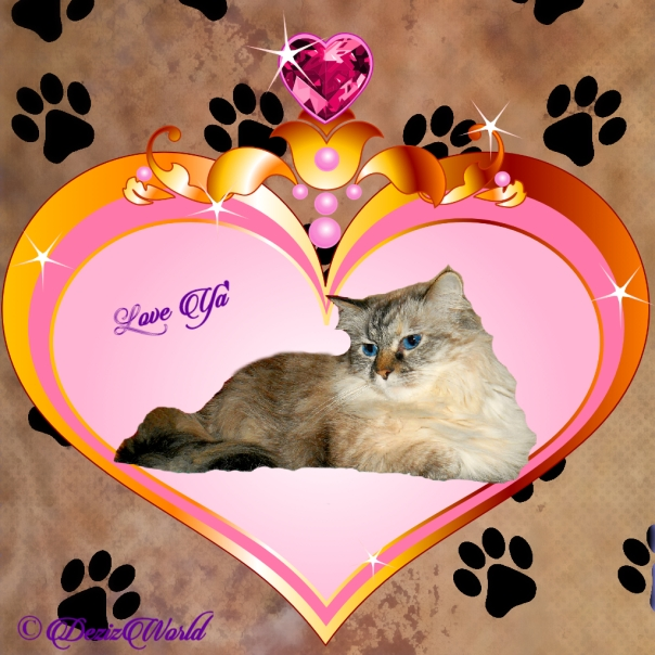 Dezi lays in heart frame love ya