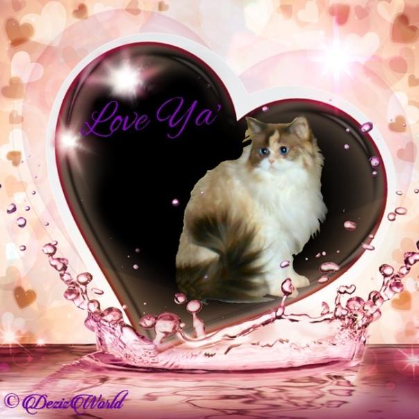Raena sits pretty profile in love ya natural heart frame