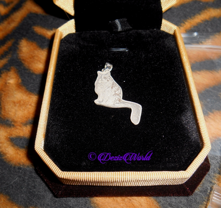 Personalized sterling silver pendant of RaenaBelle