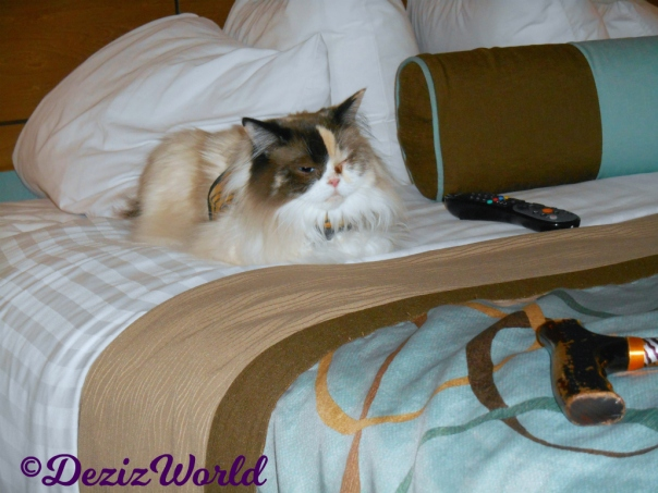 Raena lays on hotel bed