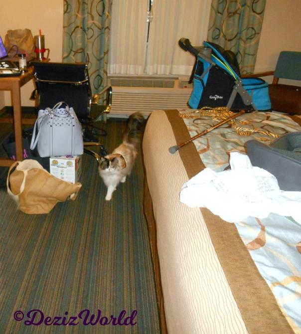 Raena walks thru hotel room