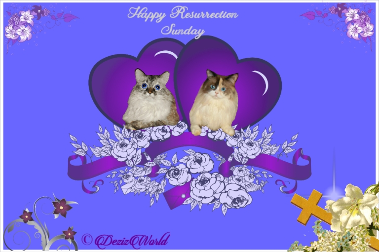 Resurrection Sunday Card