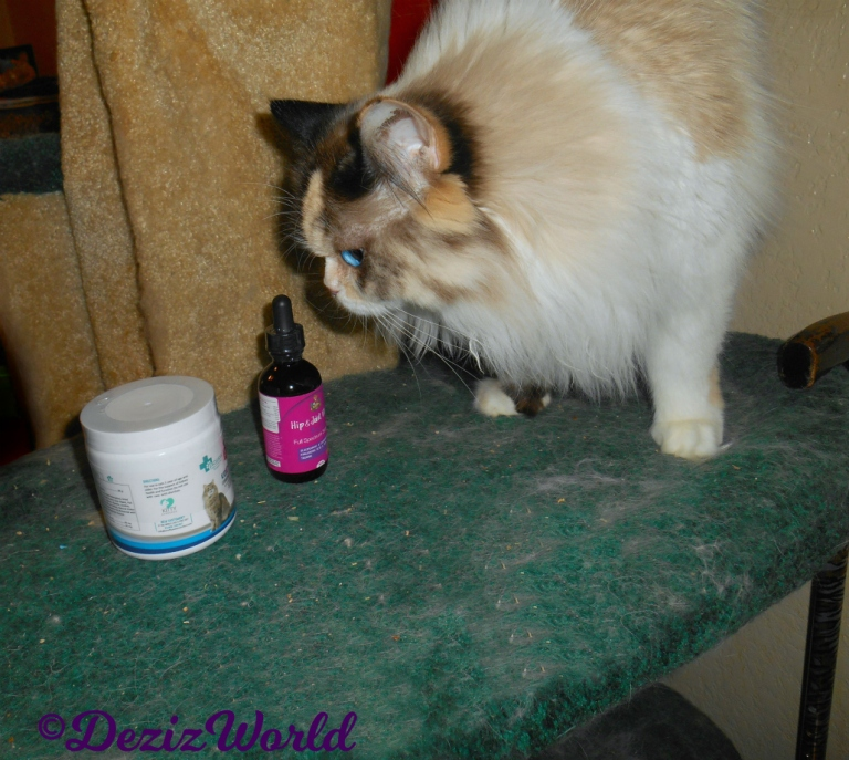 Raena checks out the Scruffy Paws Vitalize supplements