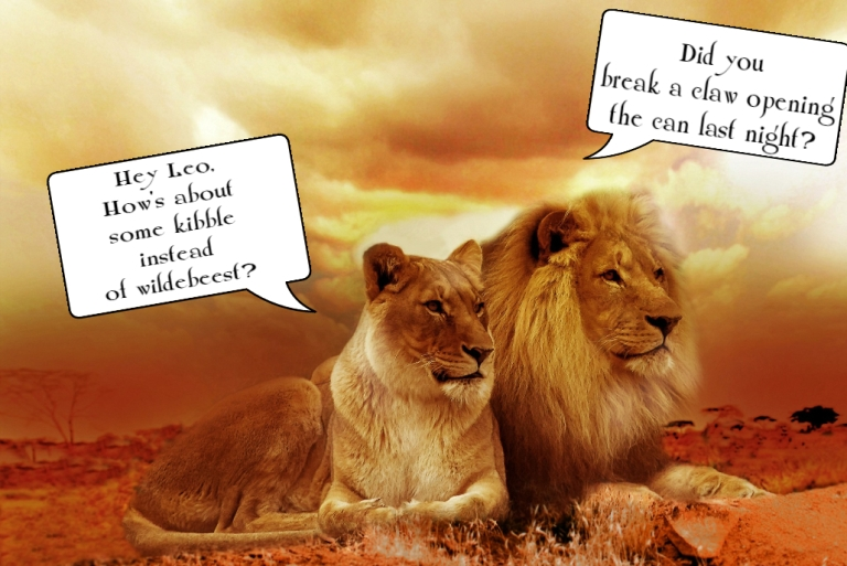 Lion and lioness dicuss food