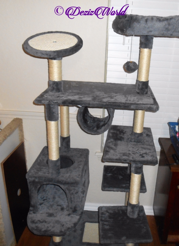 "Yaheetech 62"" cat tree"