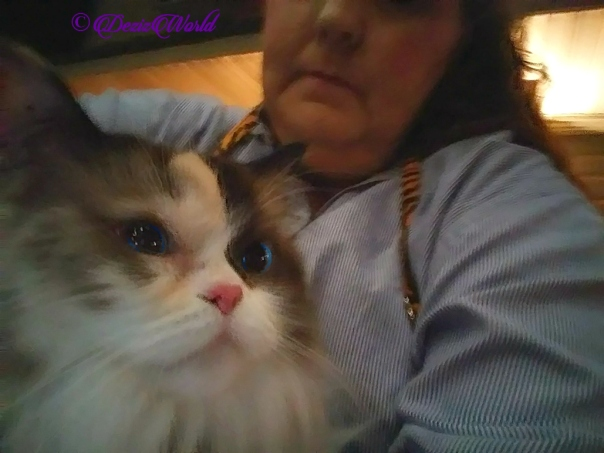 Raena selfie in mommy A's lap at Medford