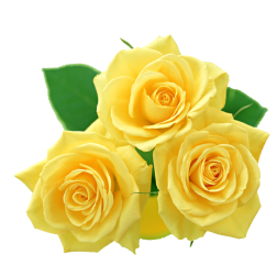 Yellow rose cluster clip art