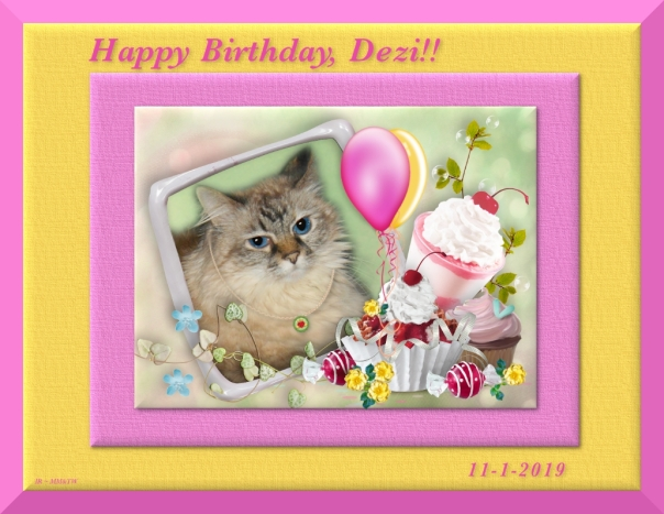 Dezi in birthday frame from Pipo, Dalton and Benji
