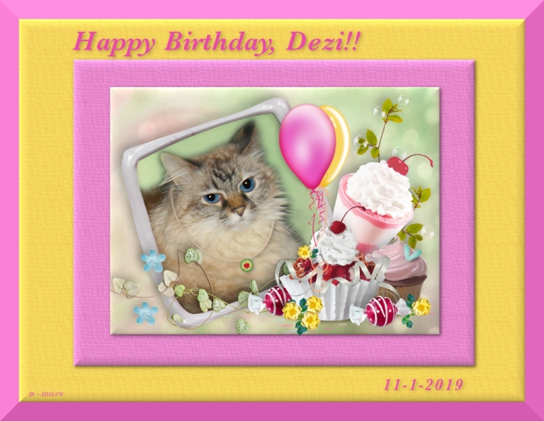 Dezi in birthday frame from Pipo, Dalton and Benji