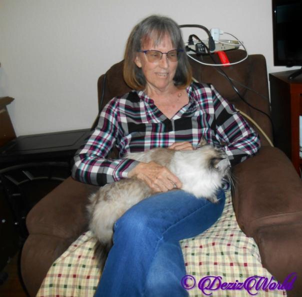 Dezi lays in Ava's lap