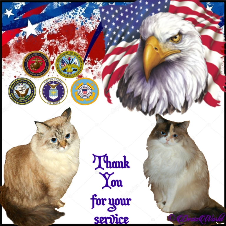 Dezi and Raena thank Vets for their service