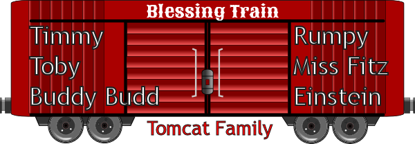 Timmy Tomcat family 2019 Blessing Train