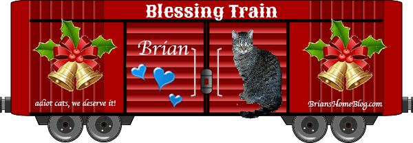 Brian boxcar 2019