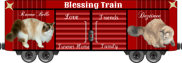 Blest Sunday: The Final Ride of the 2019 BlessingTrain