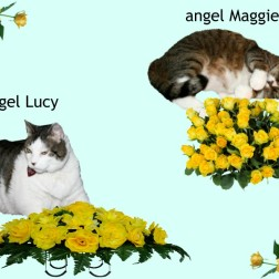 Lucy and Maggie