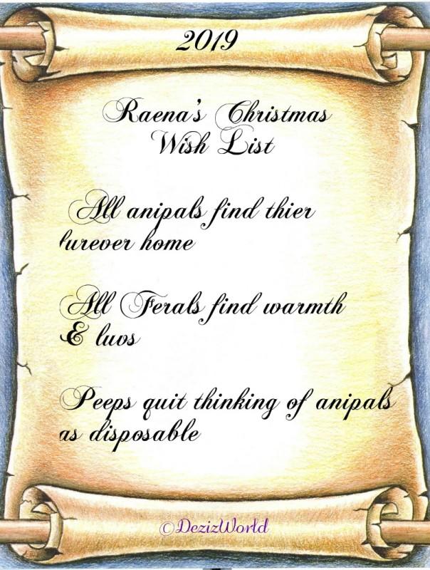 Raena's 2019 Christmas wish list