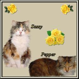 Sassy and Pepper, Vonda