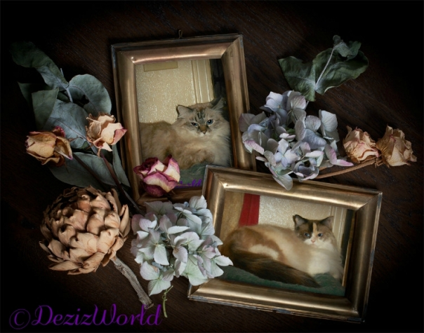 Dezi and Raena in bronze antique frames