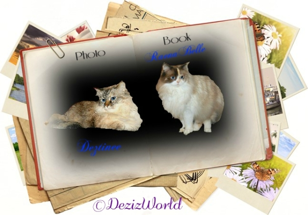 Dezi and Raena in photo book frame