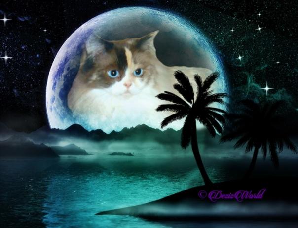 Raena in the island moon