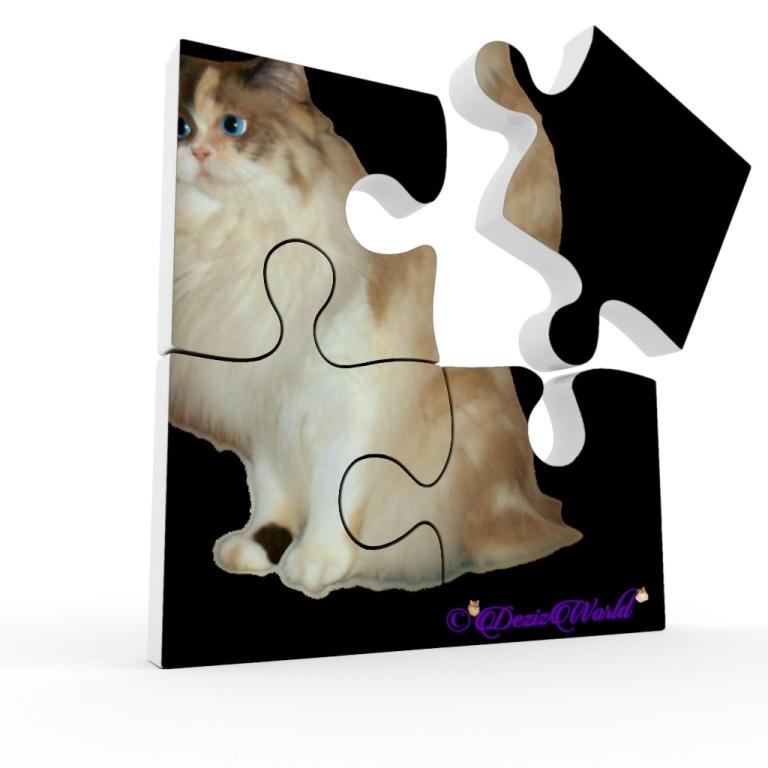 Raena as a puzzle