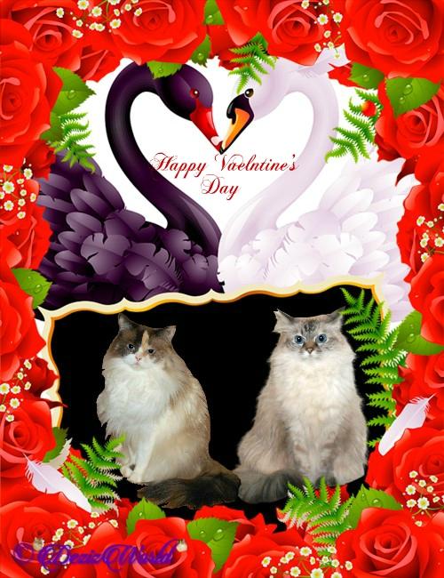 Dezi and Raena happy Vaelntine's day frame