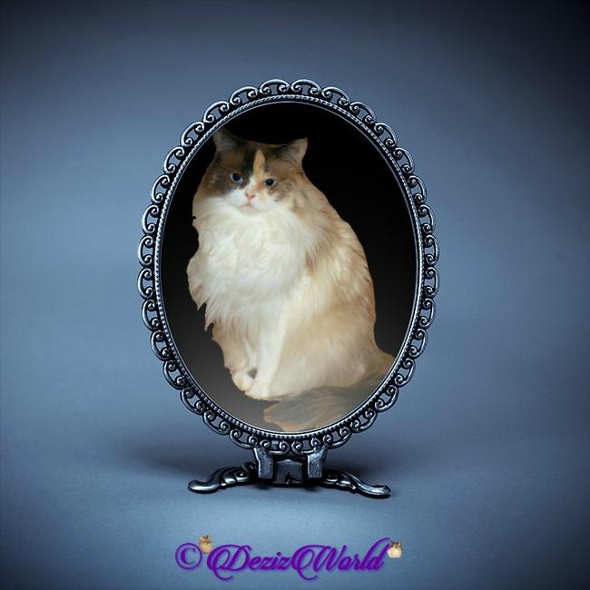 Raena in blue mirror