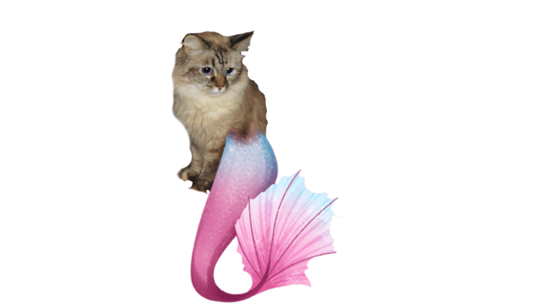 Dezi as a mermaid with pink tail